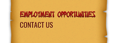 employment opportunities contact us
